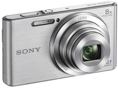 41Sv OlECQL. AC  - Sony DSCW830 20.1 MP Digital Camera with 2.7-Inch LCD (Silver)