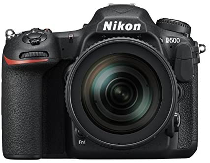 41jiZgzRlLL. AC  - Nikon D500 DX-Format Digital SLR with 16-80mm ED VR Lens