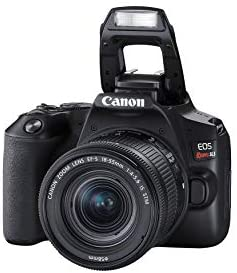 31IbV7ScJzL. AC  - Canon EOS REBEL SL3 Digital SLR Camera with EF-S 18-55mm Lens kit, Built-in Wi-Fi, Dual Pixel CMOS AF and 3.0 Inch Vari-Angle Touch Screen, Black