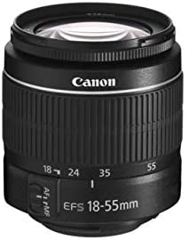 31MdmUYvgDL. AC  - Canon EOS Rebel T7 DSLR Camera Bundle with Canon 18-55mm Lens + Canon EF 75-300mm f/4-5.6 III Lens + 2pc SanDisk 64GB Memory Cards + Accessory Kit