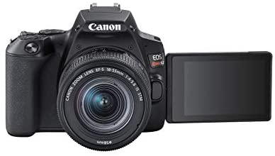 31aADI7HwxL. AC  - Canon EOS REBEL SL3 Digital SLR Camera with EF-S 18-55mm Lens kit, Built-in Wi-Fi, Dual Pixel CMOS AF and 3.0 Inch Vari-Angle Touch Screen, Black