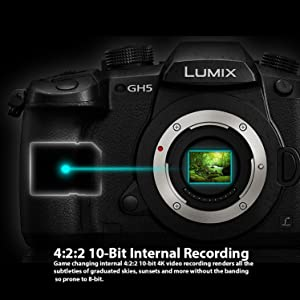 98e04c27 4f9d 46f3 96d0 aee9a3c5f623. CR0,0,749,749 PT0 SX300   - Panasonic Lumix DC-GH5 Mirrorless Micro Four Thirds Digital Camera Body, 2X Transcend 64GB, Professional Video LED Light, Microphone, Accessory Bundle