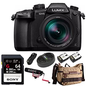 a27132a7 c8b2 4aaf 80b3 2b159eaf37c8. CR0,0,1500,1500 PT0 SX300   - Panasonic LUMIX GH5 4K Mirrorless Camera with Leica DG 12-60mm Lens and Accessory Bundle