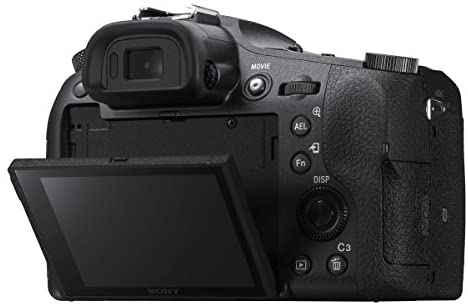 414iy6GWr0L. AC  - Sony RX10 IV Cyber-Shot High Zoom 20.1MP Camera with 24-600mm F.2.4-F4 Lens Bundle with 64GB Memory Card, Camera Bag, 2X Battery and Photo and Video Professional Editing Suite