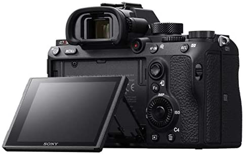 41MRzxRcANL. AC  - Sony a7R III Full Frame Mirrorless Interchangeable Lens Camera 42.4MP Body ILCE7RM3/B Bundle with Vertical Battery Grip, 128GB Memory Card, Paintshop Pro Software and Accessories (12 Items)